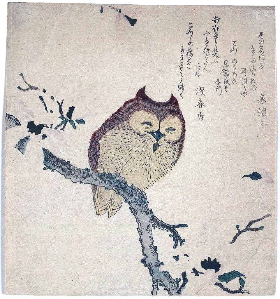 Animal Bird Owl Japanese Woodcut Kirby Dynamics